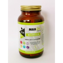 Хранителна добавка BOSWELLIA 600 мг 100 капсули - MAXLIFE Supplements