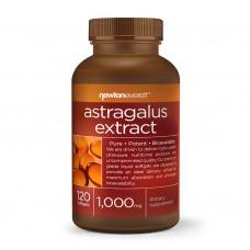 ASTRAGALUS 1000mg 120 caps - за силна имунна система - Newton Everett