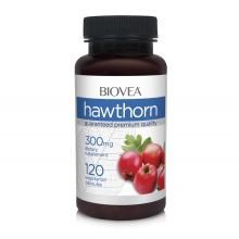 Хранителна добавка Biovea HAWTHORN 300mg 120caps цена 33.50 лв.